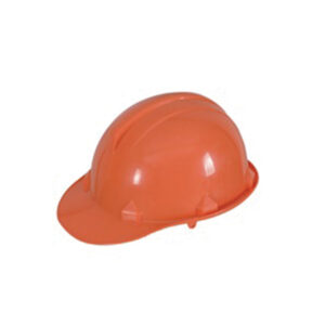 Safety Helmet Worxwell DT-T017